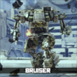Bruiser fullbody labeled110
