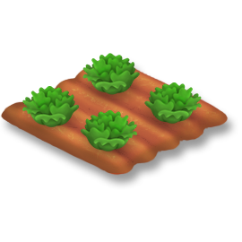 File:Lettuce Stage 3.png