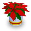 Holiday Flower