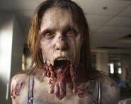 Walking Dead 1x04 001