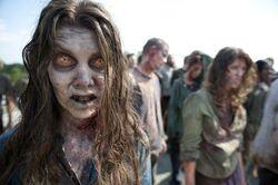 Walking Dead 2x01 003
