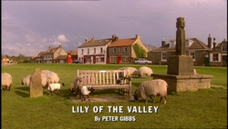 Lily of the Valley title card