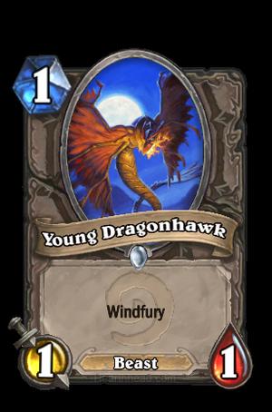 YoungDragonhawk2