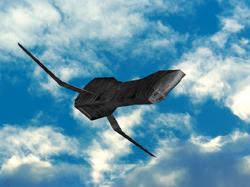 Revenant Wings II 3D Model