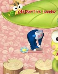 File:HKO a Gorillo Leader0013.jpg
