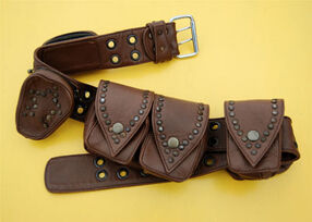 Belt-with-pockets