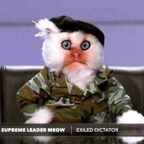Supreme Leader Meow
