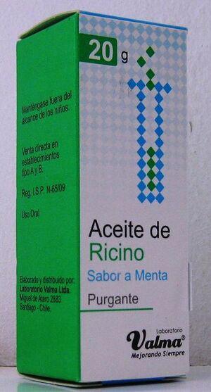 Ricinus 01.jpg