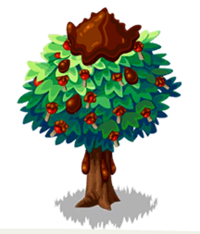 Toffee Apple Tree