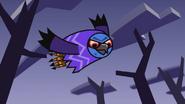 Owl King 4