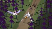 Prince of Seagulls 125