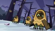 Owls 39