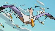 Prince of Seagulls 012