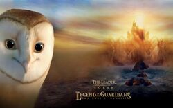 Soren-legend-of-the-guardians-the-owls-of-ga039hoole-wallpaper-1