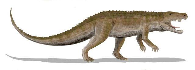 File:Ornithosuchus BW.jpg