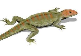 Hylonomus-lyelli