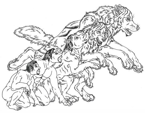 File:Wolf45.jpg