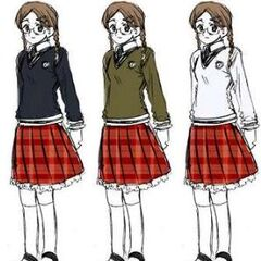 The different colors of sweaters for the girls' uniform.