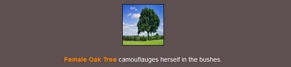 File:Stealthtree.jpg
