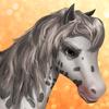 Horse -knabstrupper- Tier1
