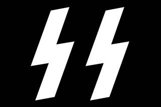 File:Waffen-SS Runes.png