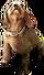HO FParty Dog-icon
