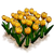 Marketplace Yellow Tulips-icon.png