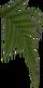 HO OceanL Fern-icon