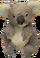 HO MQuinns Koala-icon