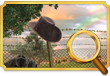 Quest Task Find Checkpoint-icon