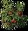 HO BShack Tomato Plant-icon