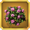 Quest Task Pink Rose Bush-icon