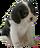 HO NursR Puppy-icon