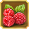 File:Quest Task Raspberries-icon.png