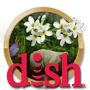 Quest DISH Fast Find Quest-icon