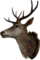 HO CargoHold Deer-icon