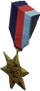 HO OceanL Medal-icon