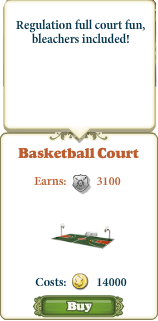 Marketplace Basketball Court-info
