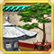 Quest Task Chinese New Year Decoration-icon
