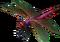 HO ConqC Dragonfly-icon