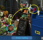 Scene Florist Shop-Super Clue