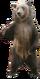 HO HSPoker Bear-icon