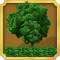 Quest Task Gardening Items-icon