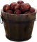 HO Basket of Apples-icon