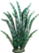 HO MTemple Exotic Feathers-icon