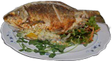 File:HO TitanicSunDeck Fish-icon.png