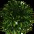 Marketplace Bush 3-icon.png