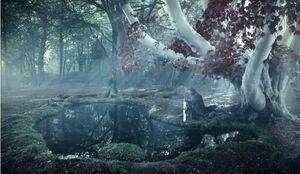Bosque de Dioses Invernalia.JPG
