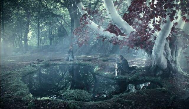 Archivo:Bosque de Dioses Invernalia.JPG