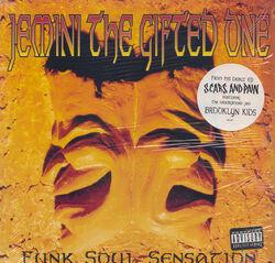 Funk Soul Sensation - Jemini